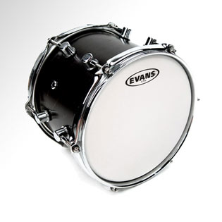 evans g plus coated white drumhead