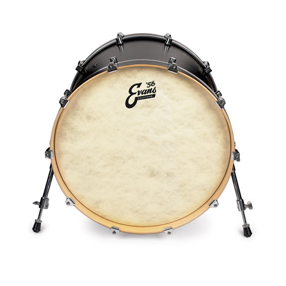evans 56 39 calftone bass drum head bass drum heads steve weiss music. Black Bedroom Furniture Sets. Home Design Ideas